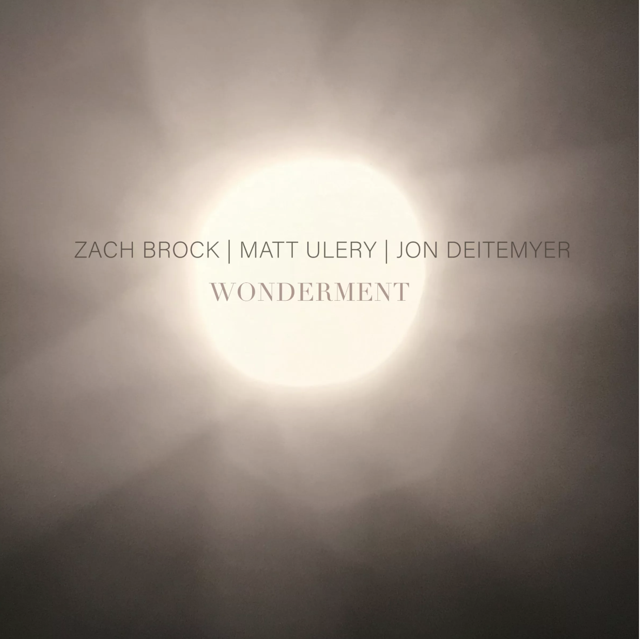 "NEW RELEASE: Woolgathering Records Presents Zach Brock/Matt Ulery/Jon Deitemyer's ""Wonderment"" out 7/16/19"