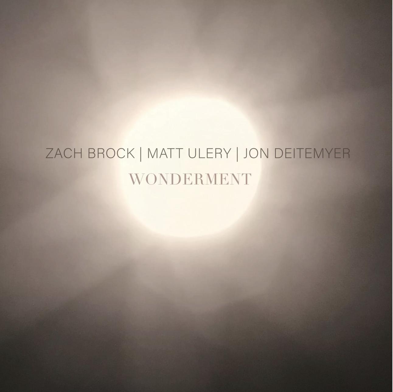 JAZZIZ: Wonderment (Zach Brock/Matt Ulery/Jon Deitemyer) is one of Ten New Albums you Need to Know!