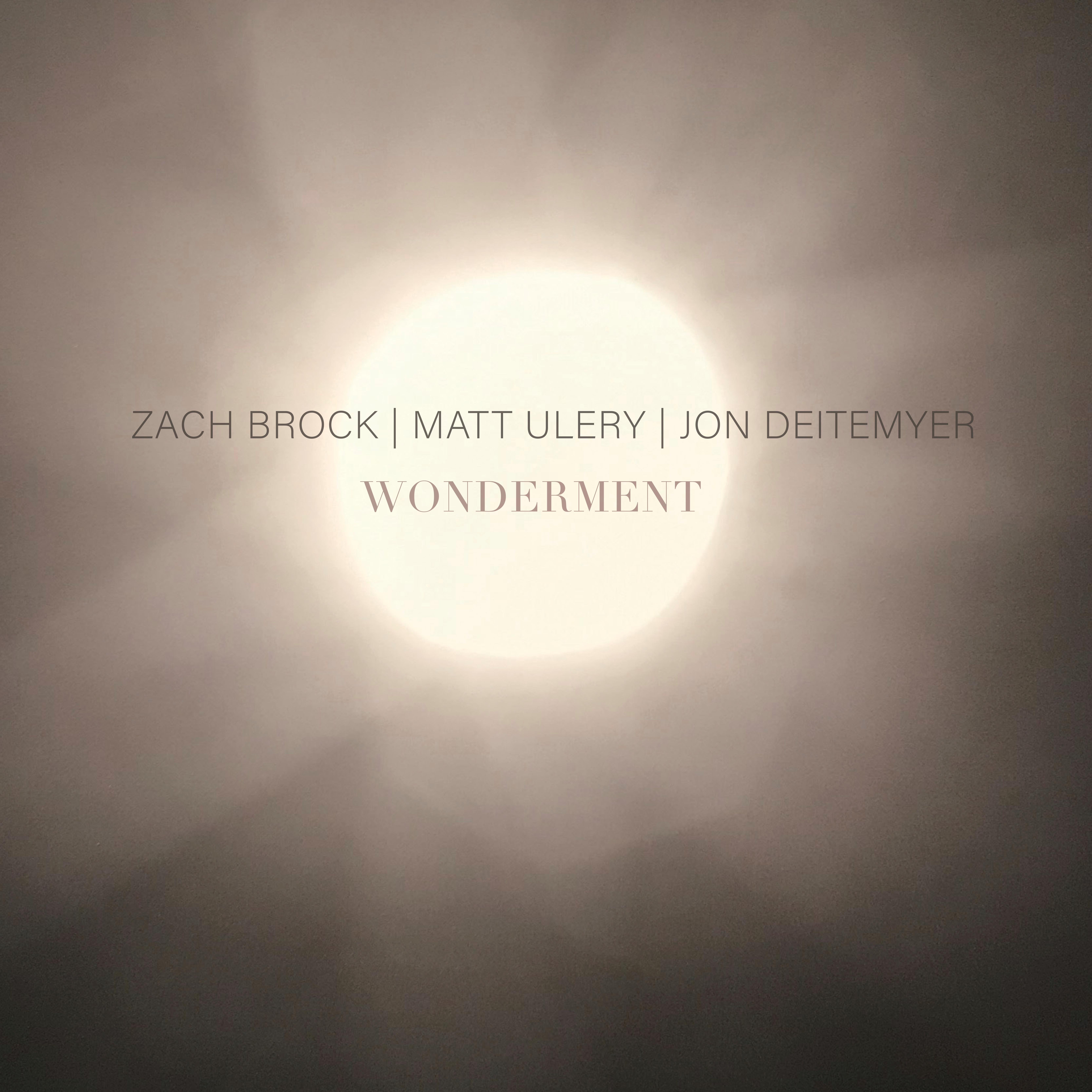 REVIEW: Zach Brock, Matt Ulery and Jon Deitemyer's Wonderment Reviewed by All About Jazz
