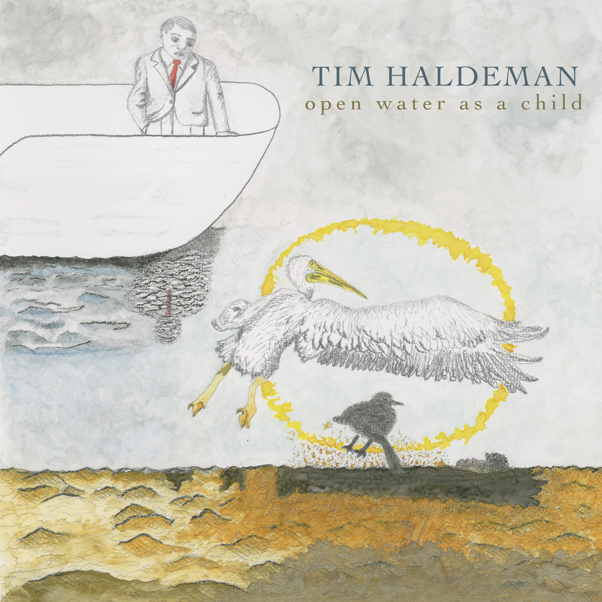 "BEST OF 2018: Bird Is The Worm Reviews Tim Haldeman's ""Open Water As A Child"""
