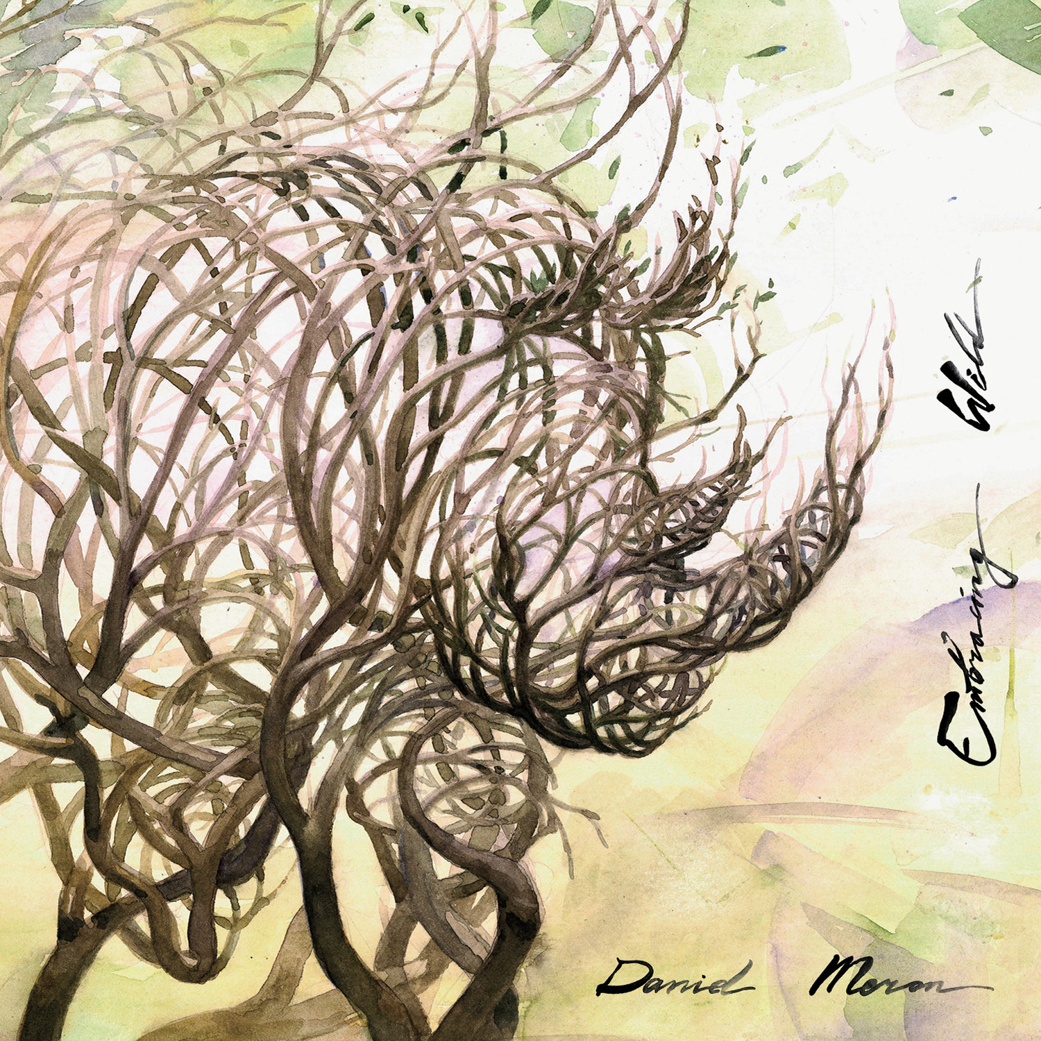 "NEW RELEASE: Pianist Daniel Meron to Release ""Embracing Wild"" on August 2nd!"