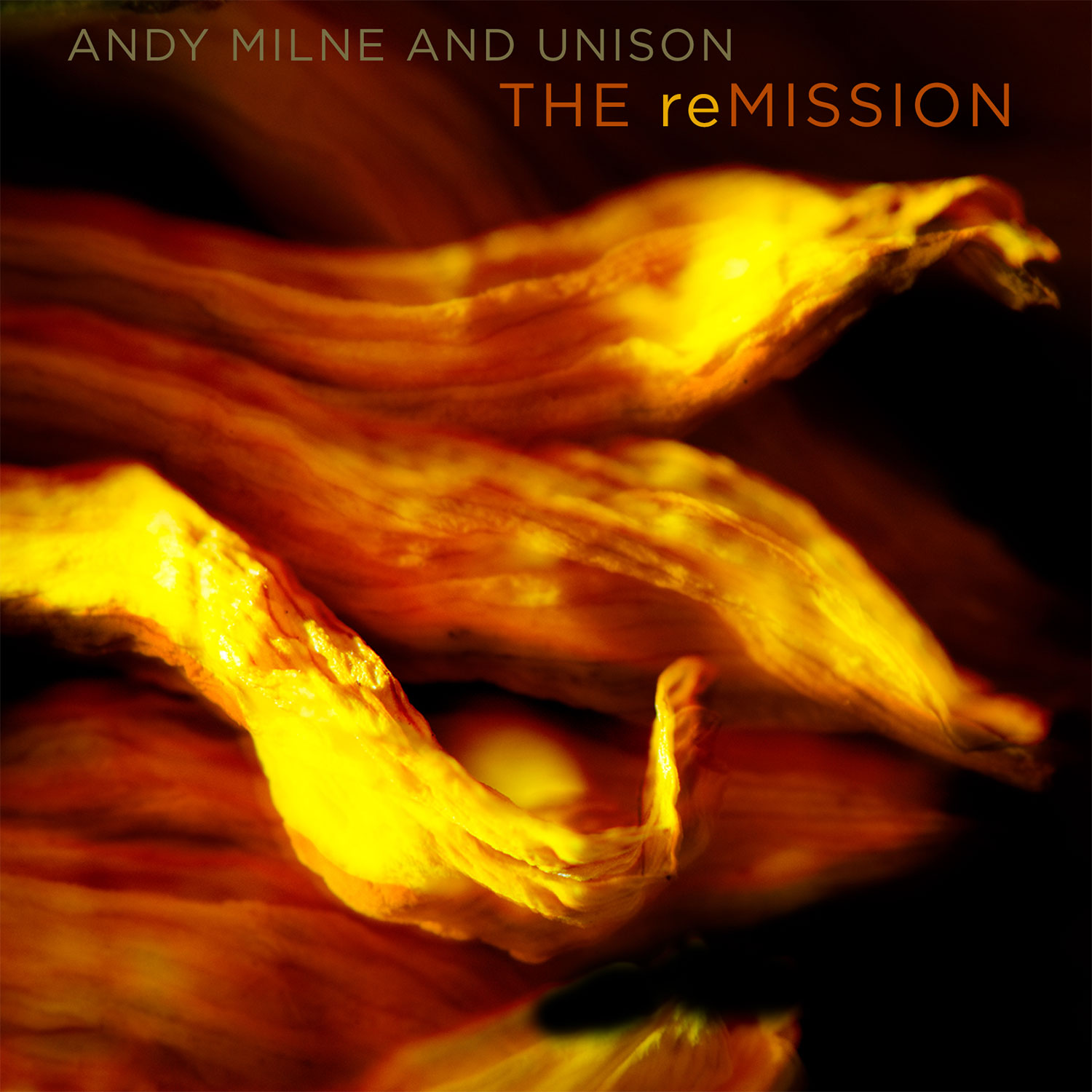 NEW RELEASE: Andy Milne's First Album with his UNISON TRIO, 'The reMission', is out 4/10 on Sunnyside