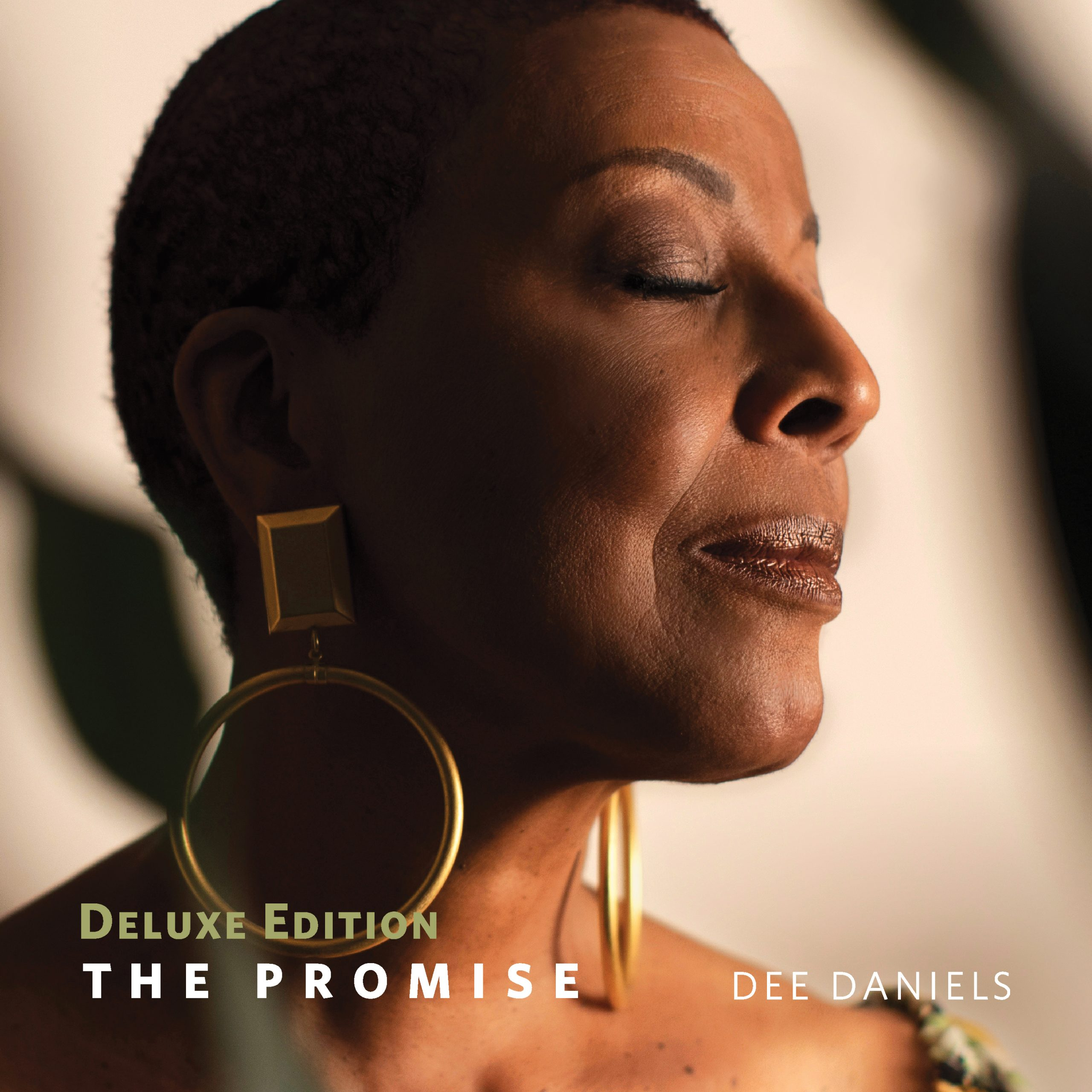 """VIDEO PREMIERE: Dee Daniels' Video Premiere for """"One Moment In Time"""" on Soul Tracks"""